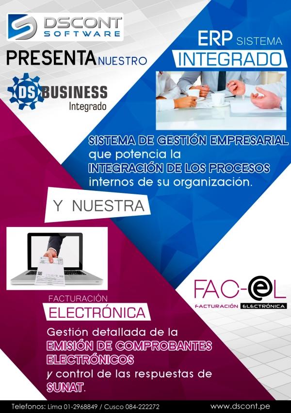 flyer-ds-business-y-fac-el