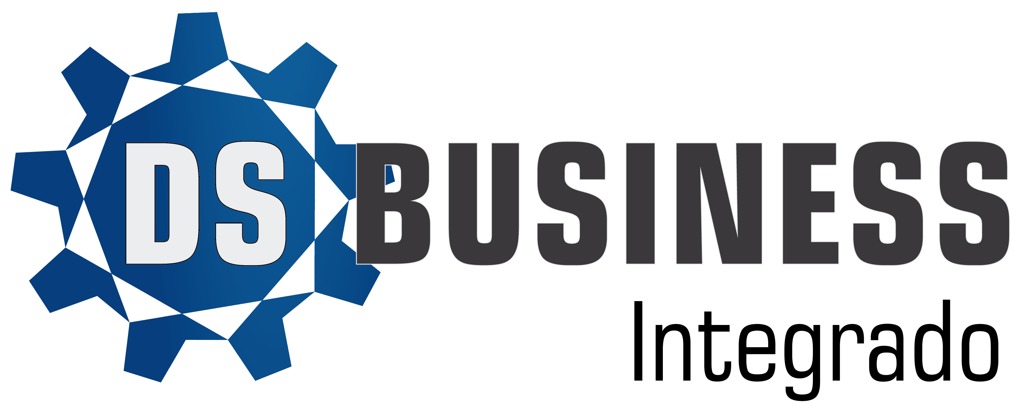 logo-ds-business